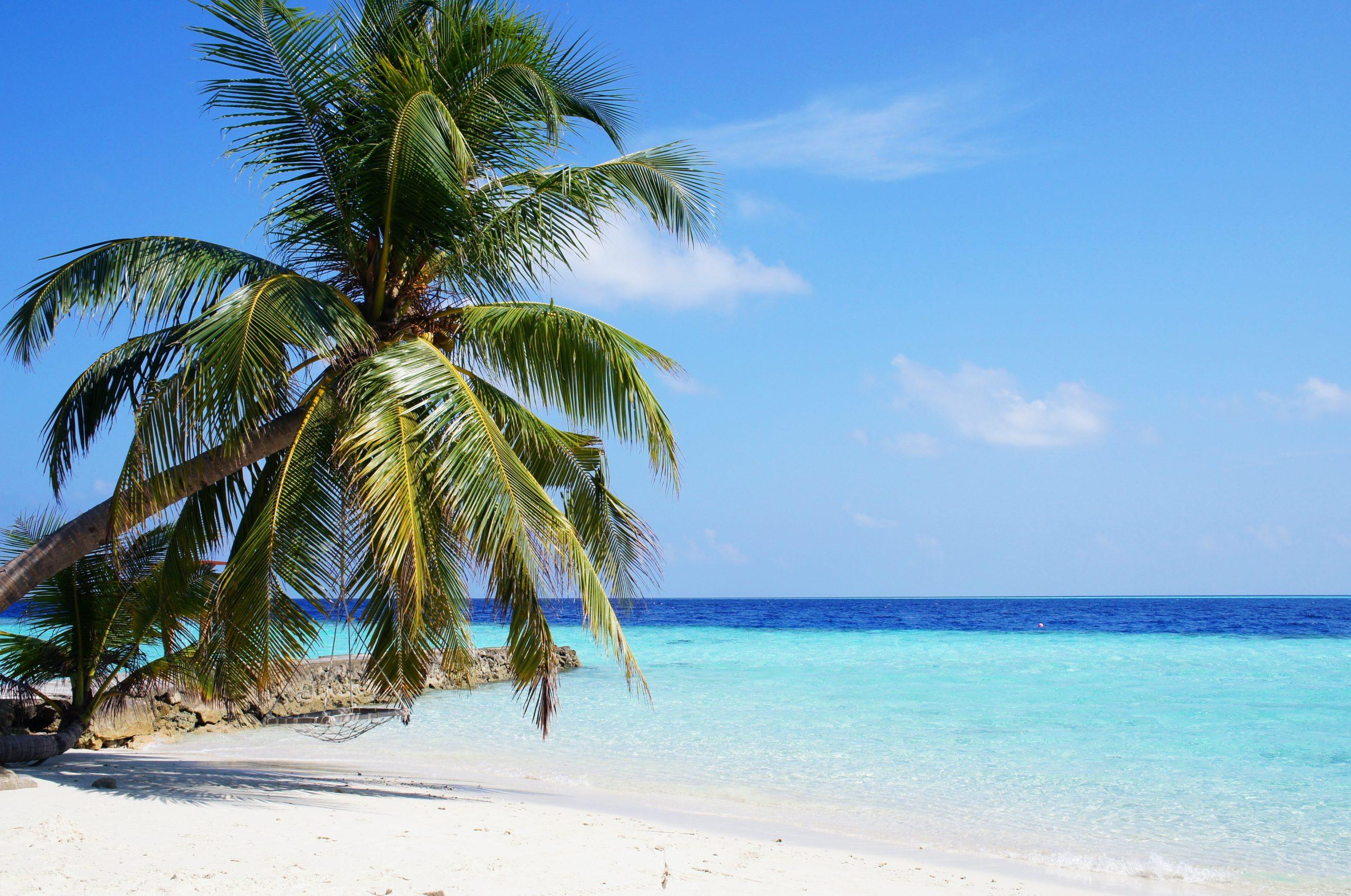 De Malediven