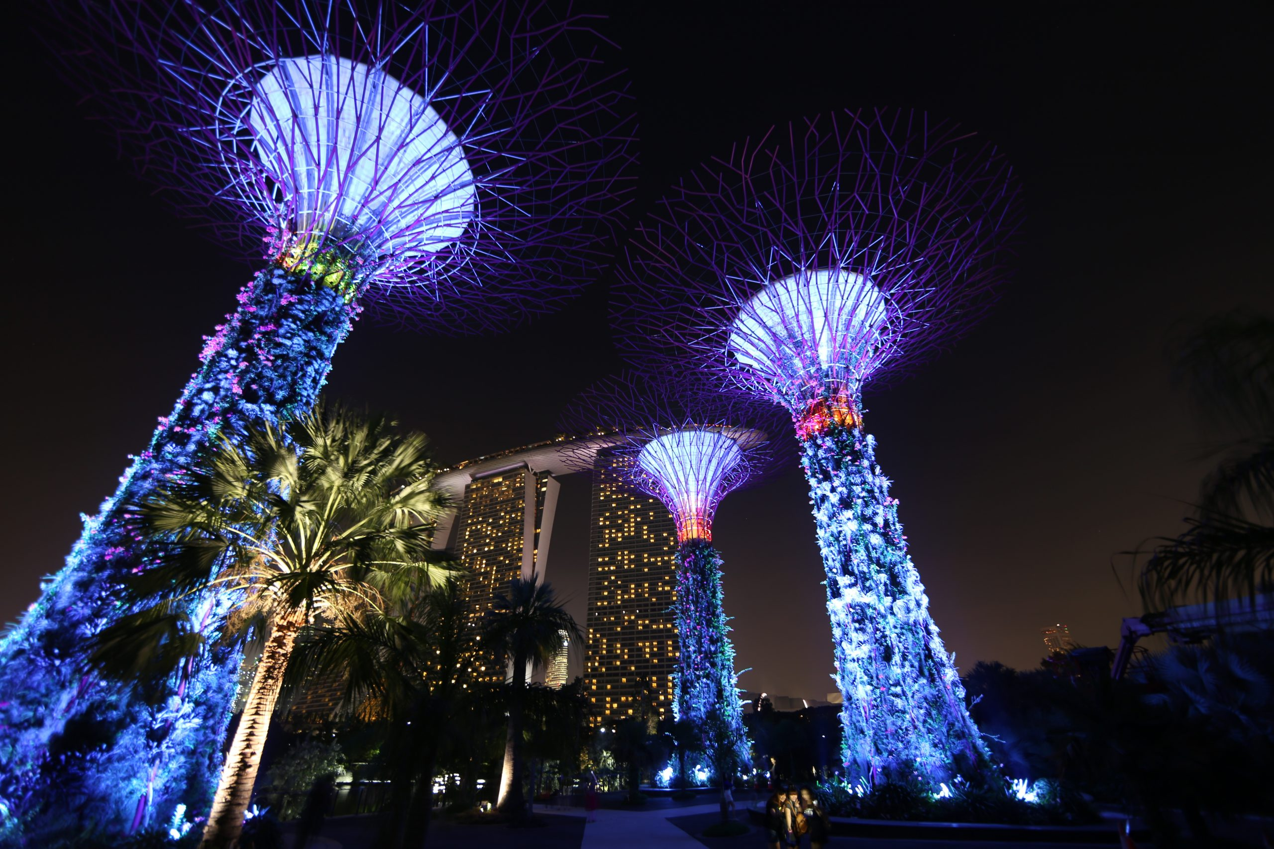 Gardens by the bay @ night