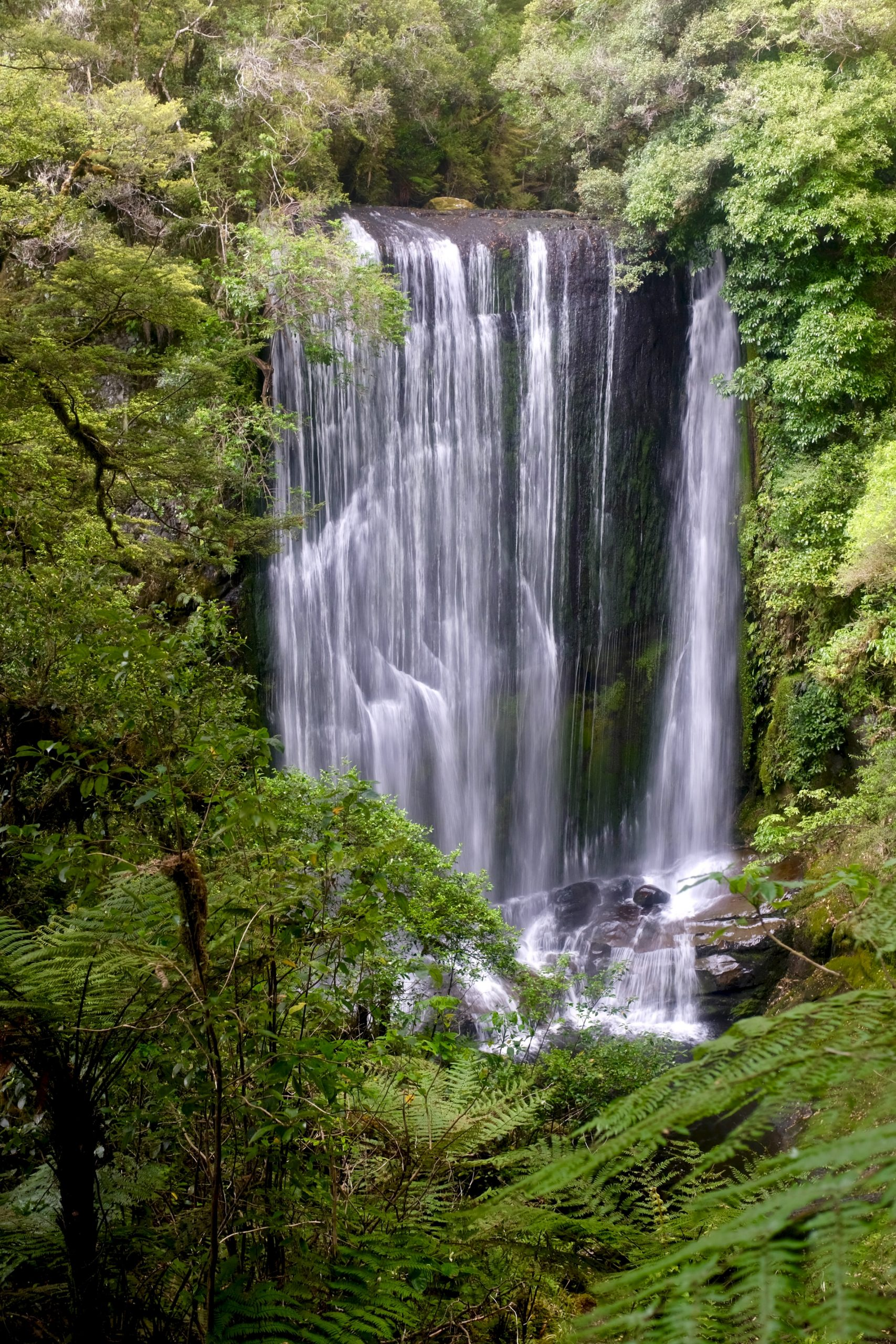 Te Urawera Nationaal Park, Nieuw-Zeeland
