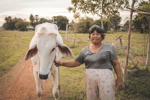 Een boeren vrouw op de velden van Cambodja, nabij Kampot