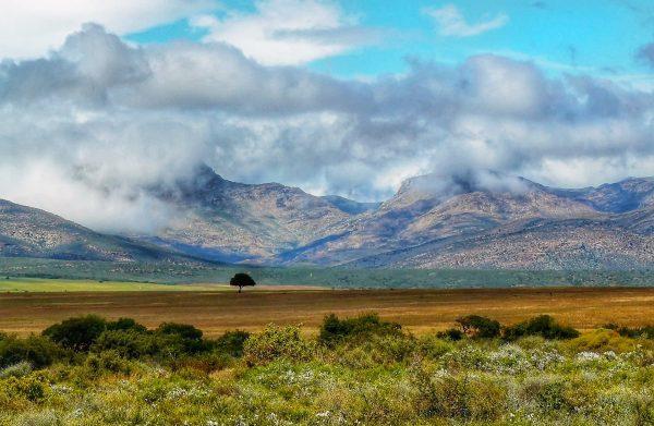 Karoo National Park, Zuid-Afrika