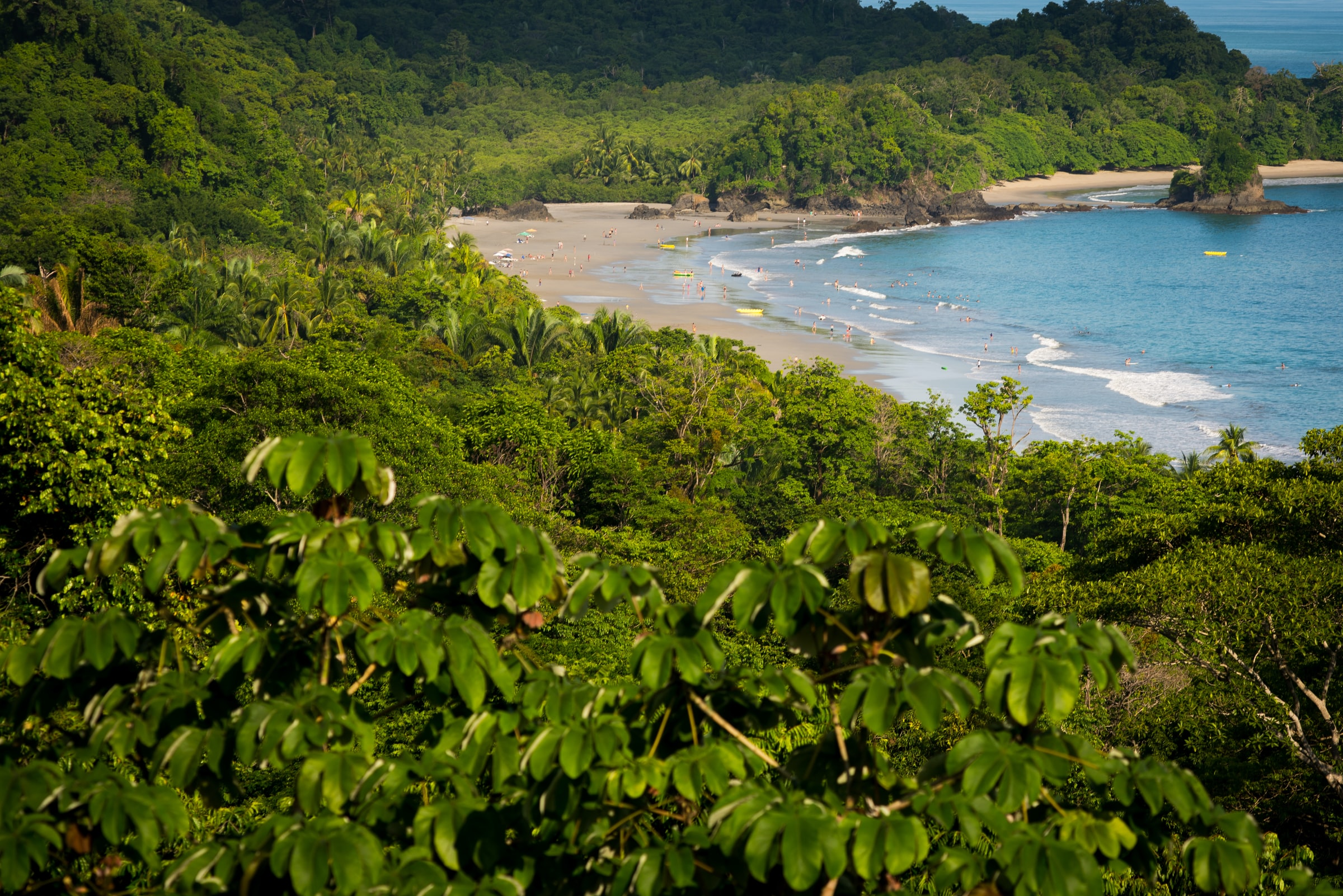 Manuel Antonio Nationaal Park. Costa Rica