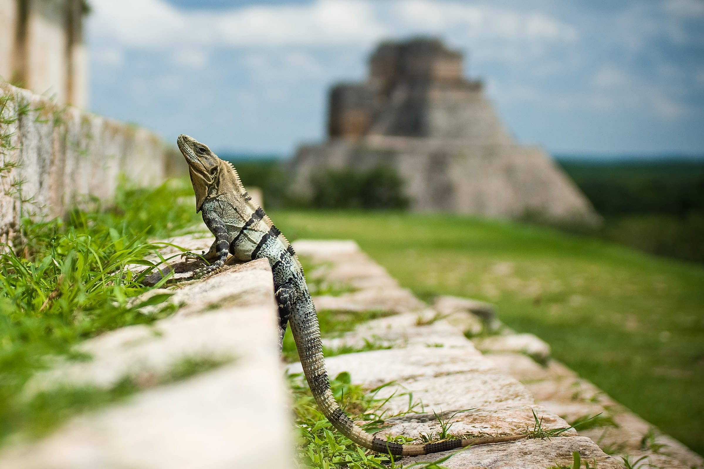 Uxmal Mexico, must sees