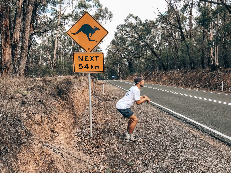 Kangaroo Thom | Wonen en werken in Australië