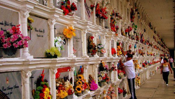 Begraafplaats San Pedro | Must sees Medellin