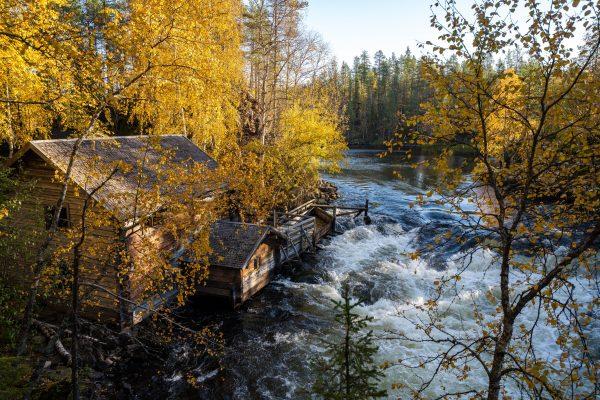 Oulanka National Park | Finland