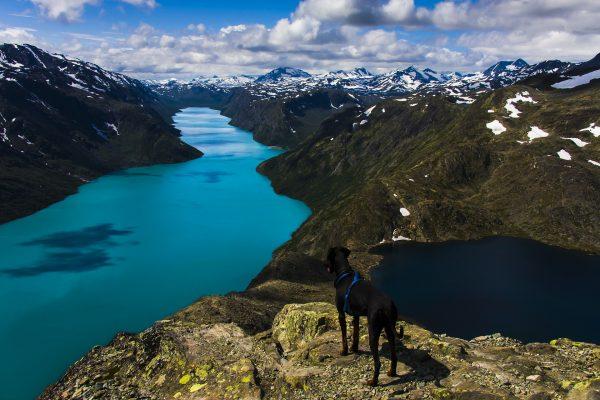 Jotunheimen National Park | Noorwegen