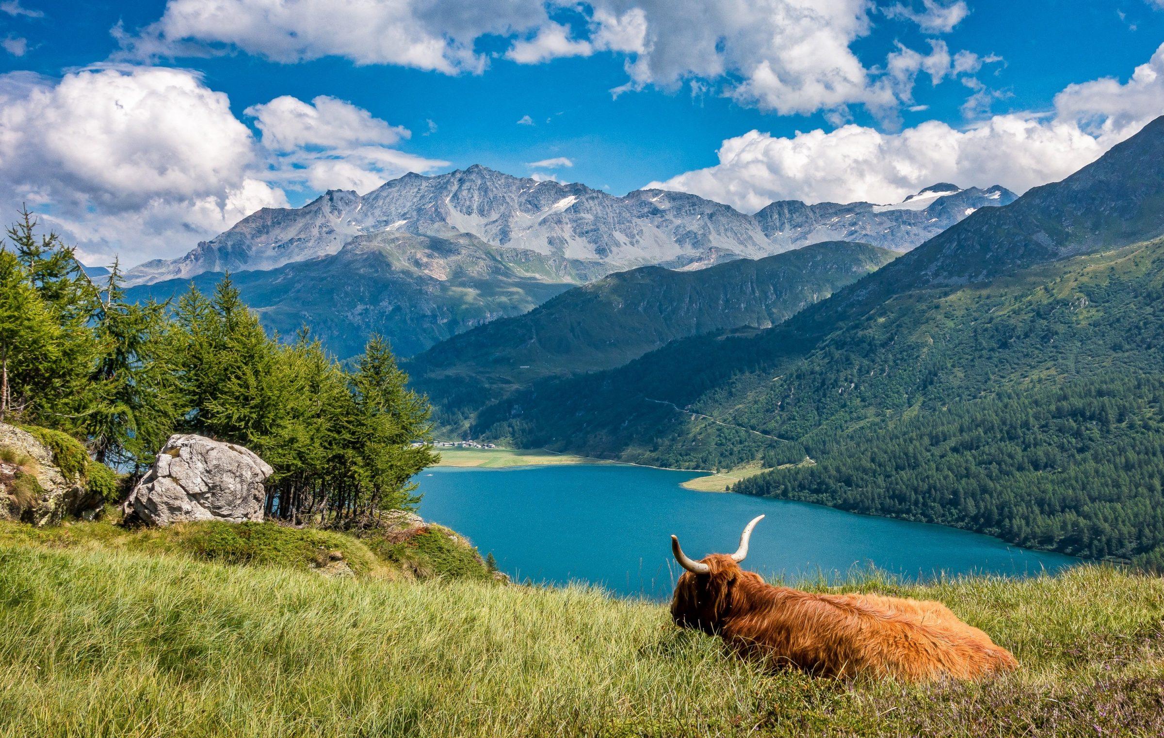 Zwitserland, nog steeds één van de veiligste landen in Europa