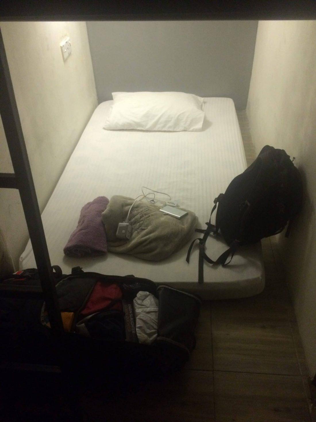 bed bedbugs