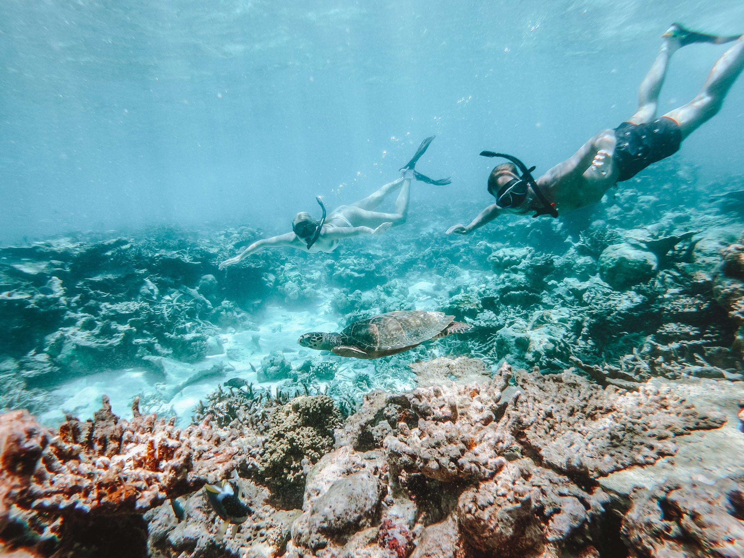 Snorkelen bij koraalriffen | Malediven