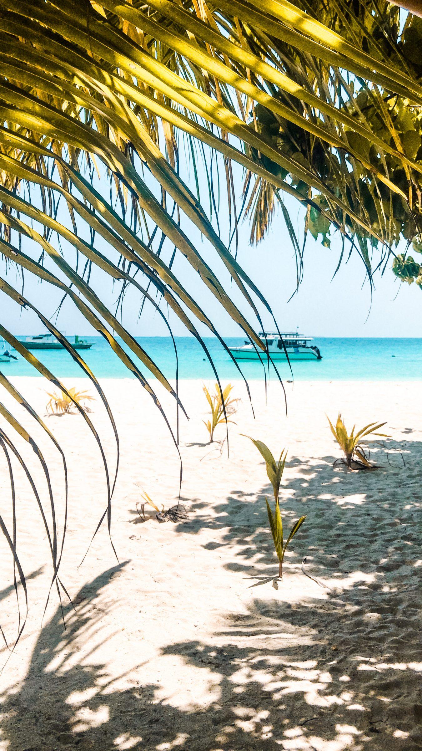 Wat te doen op de Malediven