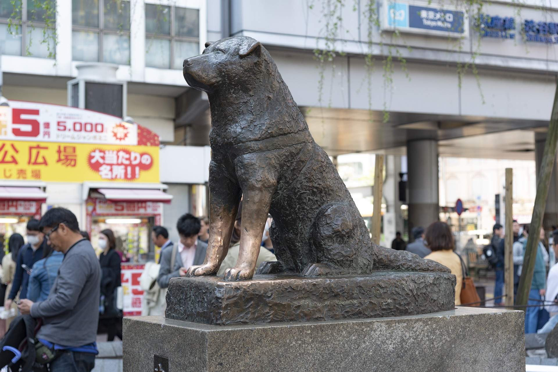 Hachiko-standbeeld