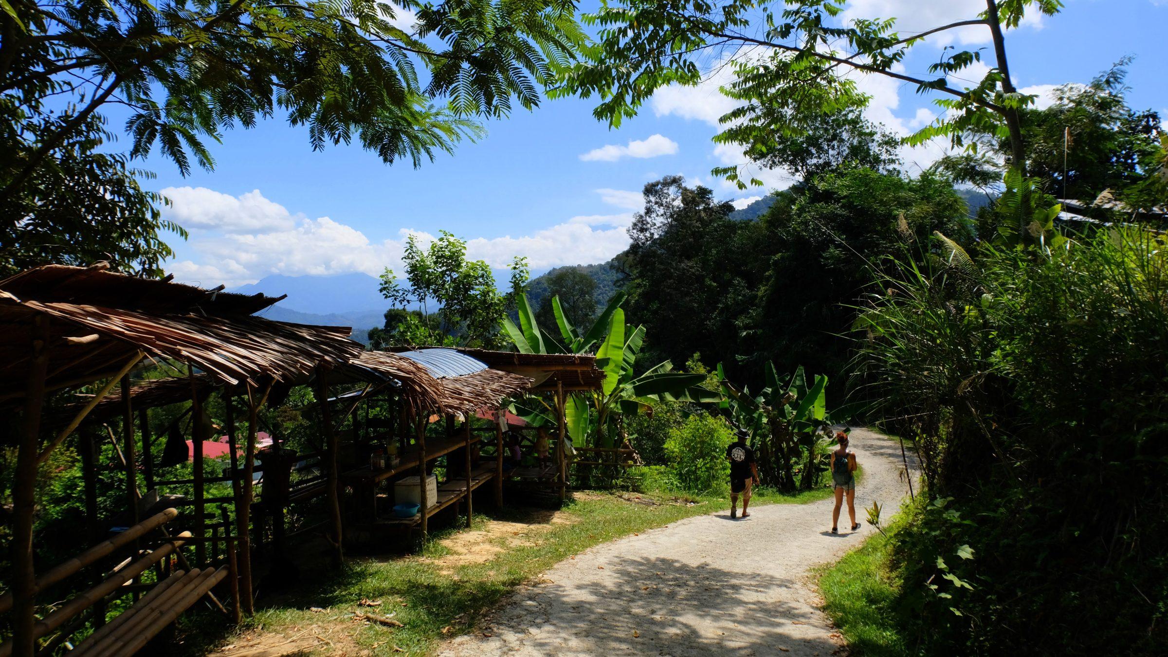 Tours en activiteiten zijn redelijk betaalbaar in Maleisië