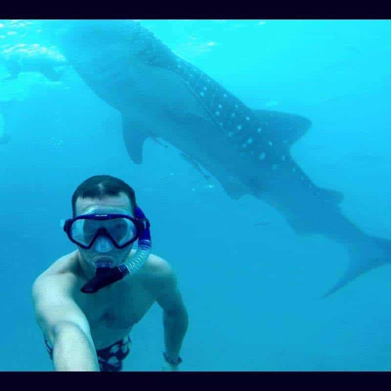 Whaleshark selfie in Oslob, Filipijnen
