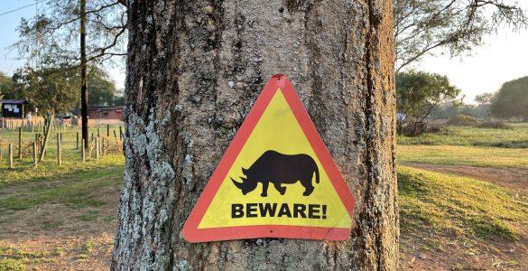 Beware of Rhino's (Ziwa Rhino Sanctuary)