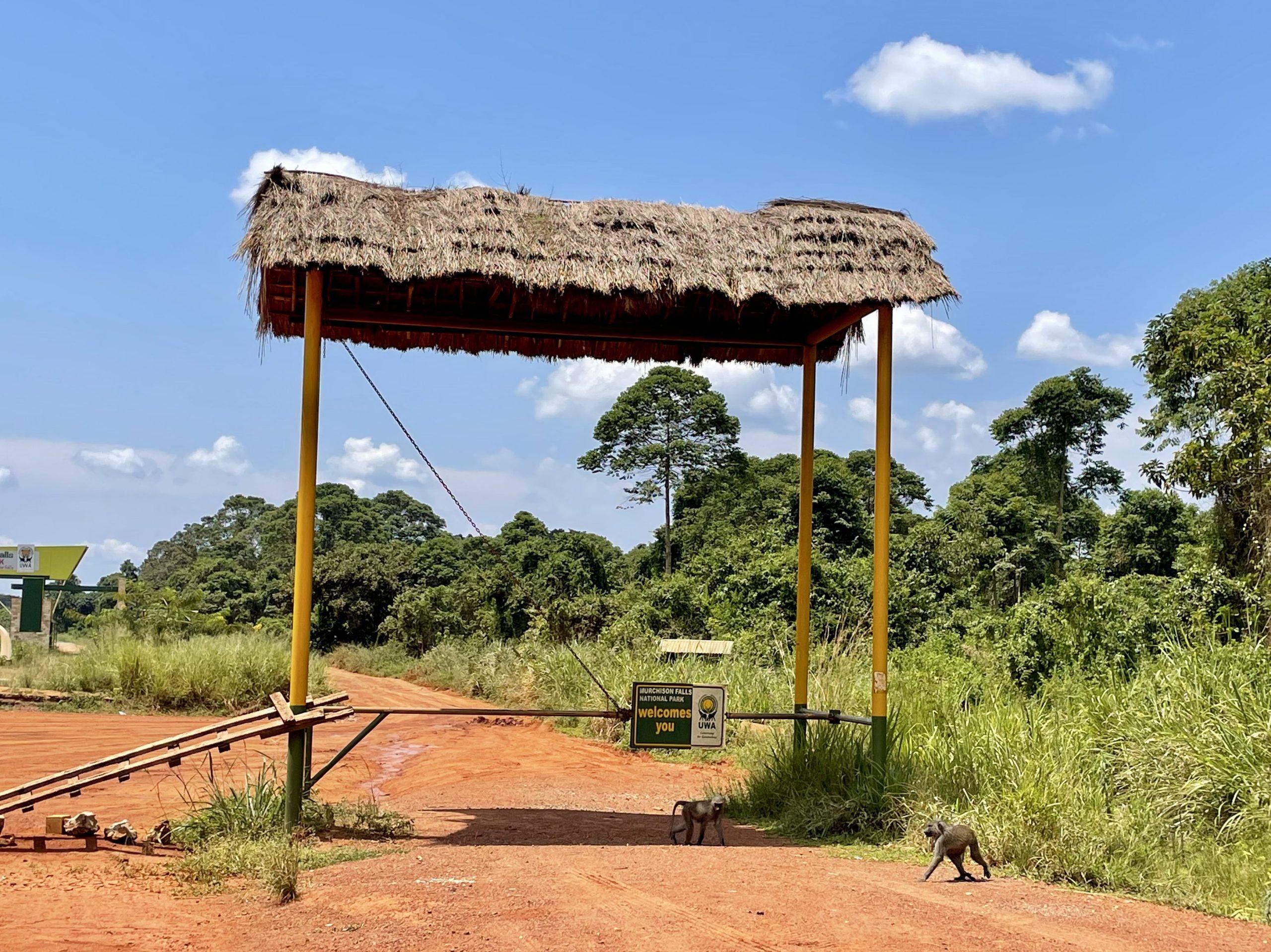 De nieuwe entree van Murchison Falls NP nabij Masindi