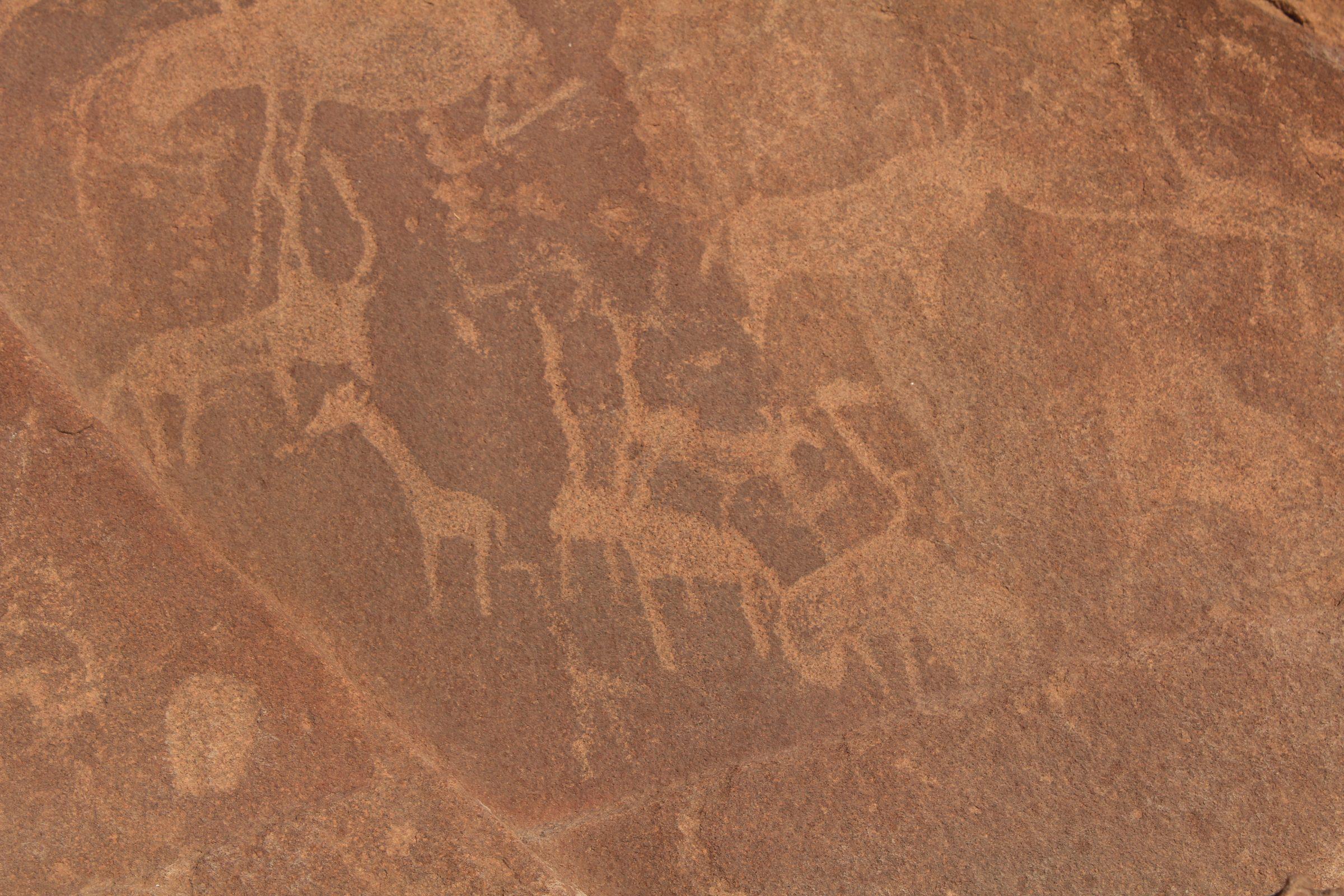 De rotsgravures in Twyfelfontein gemaakt door de bosjesmannen
