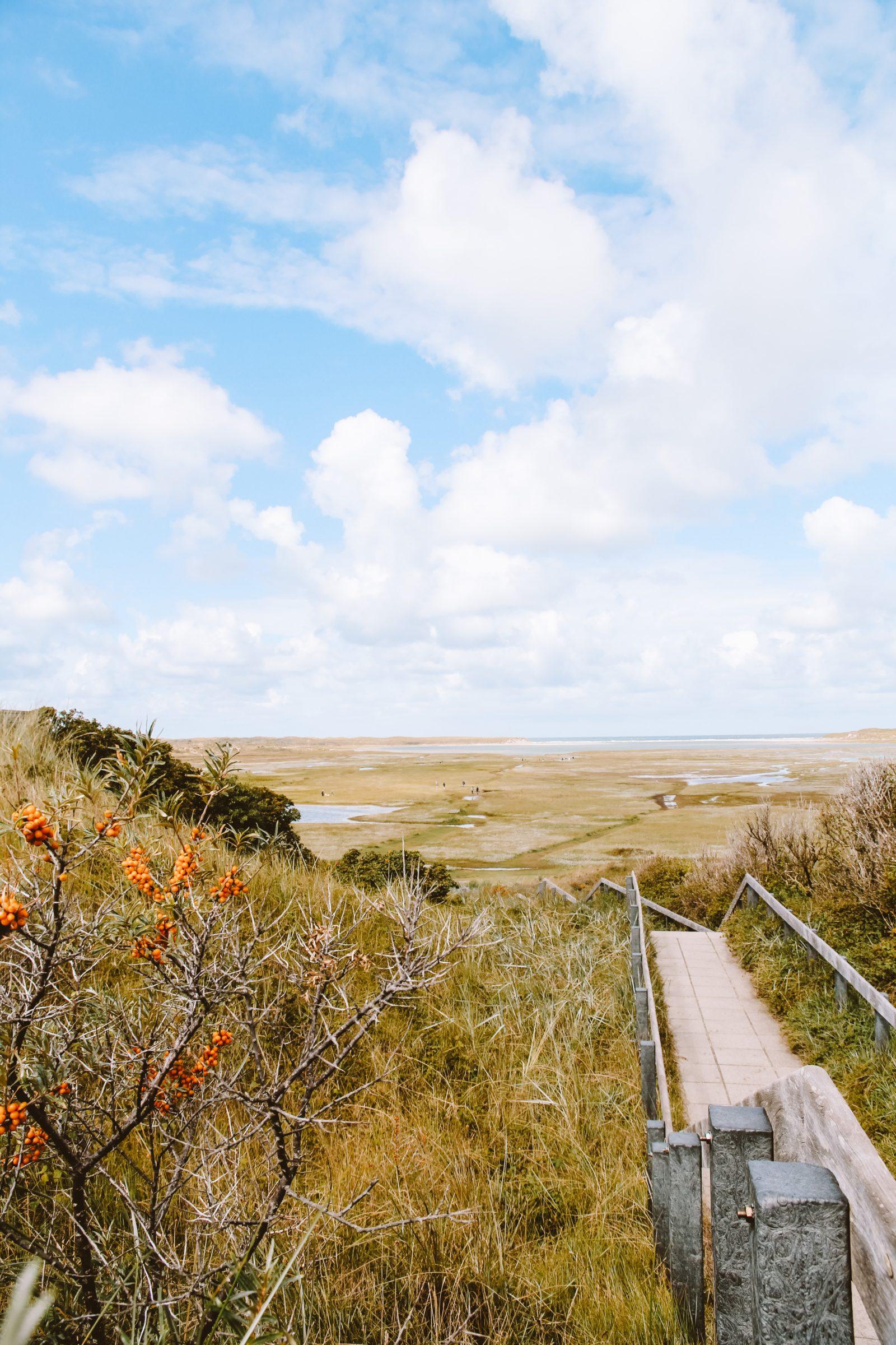 Bezienswaardigheden Texel - wandelen in de duinen
