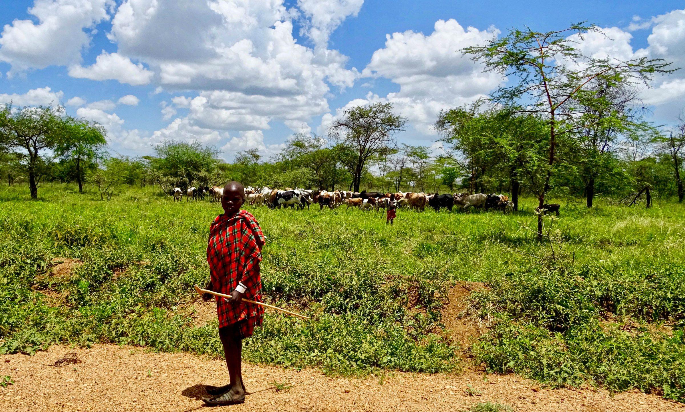 Een jonge herder in Matheniko Game Reserve