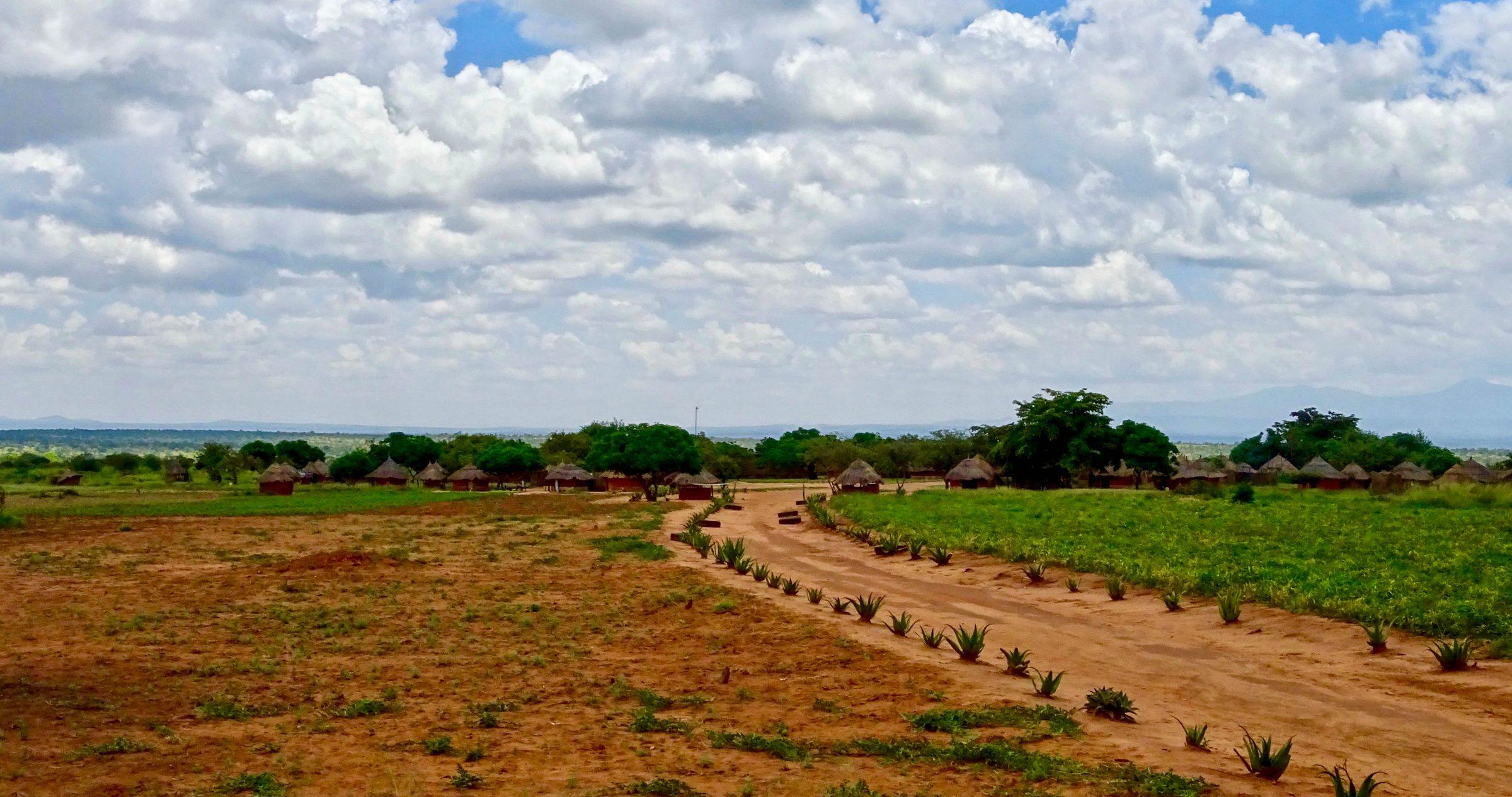 Een Karamojong nederzetting langs de puntgave asfaltweg van Moroto naar Nakapiripirit