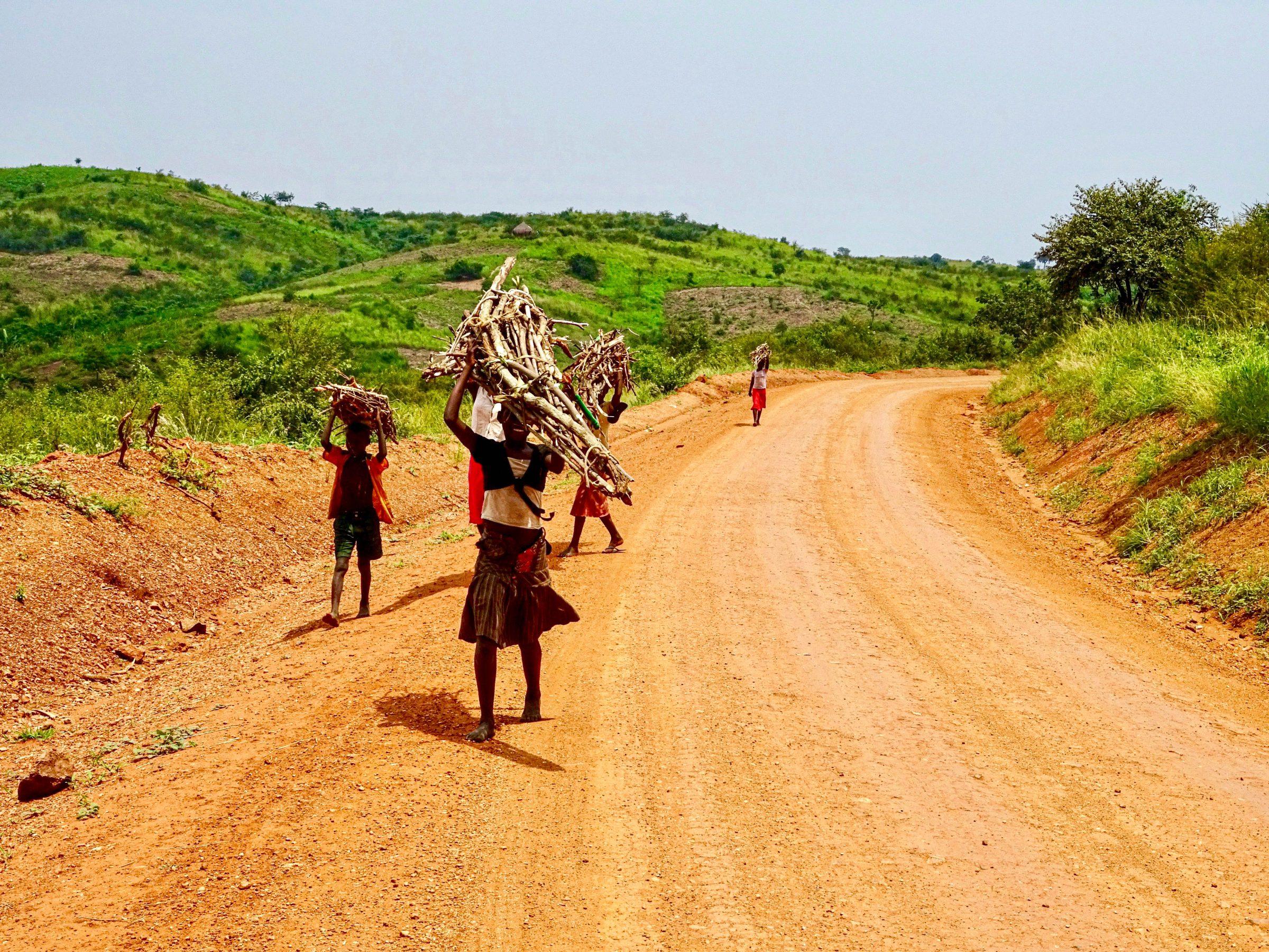 Kinderen transporteren brandhout nabij Biso