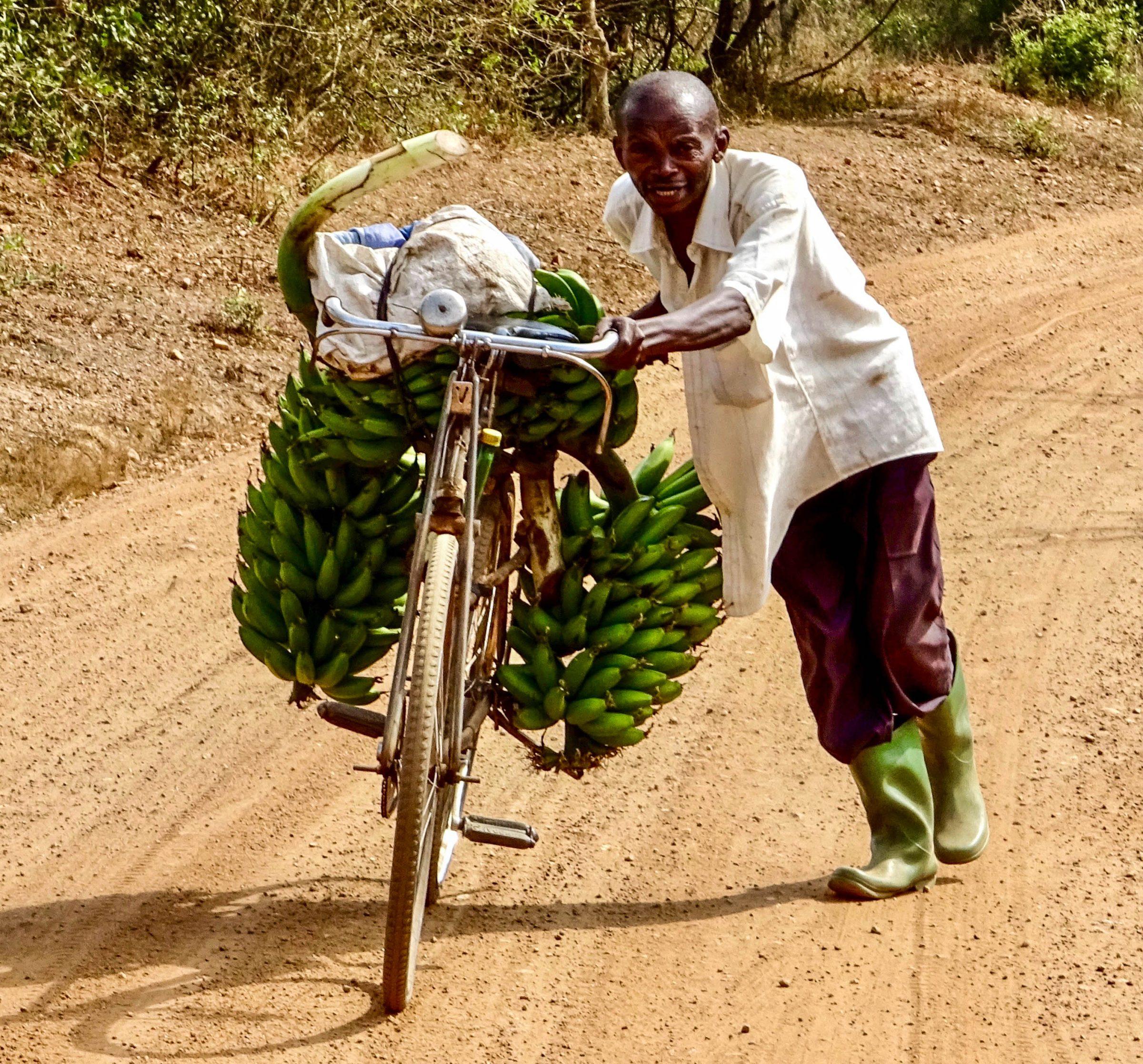 De bananenman van Lake Mburo