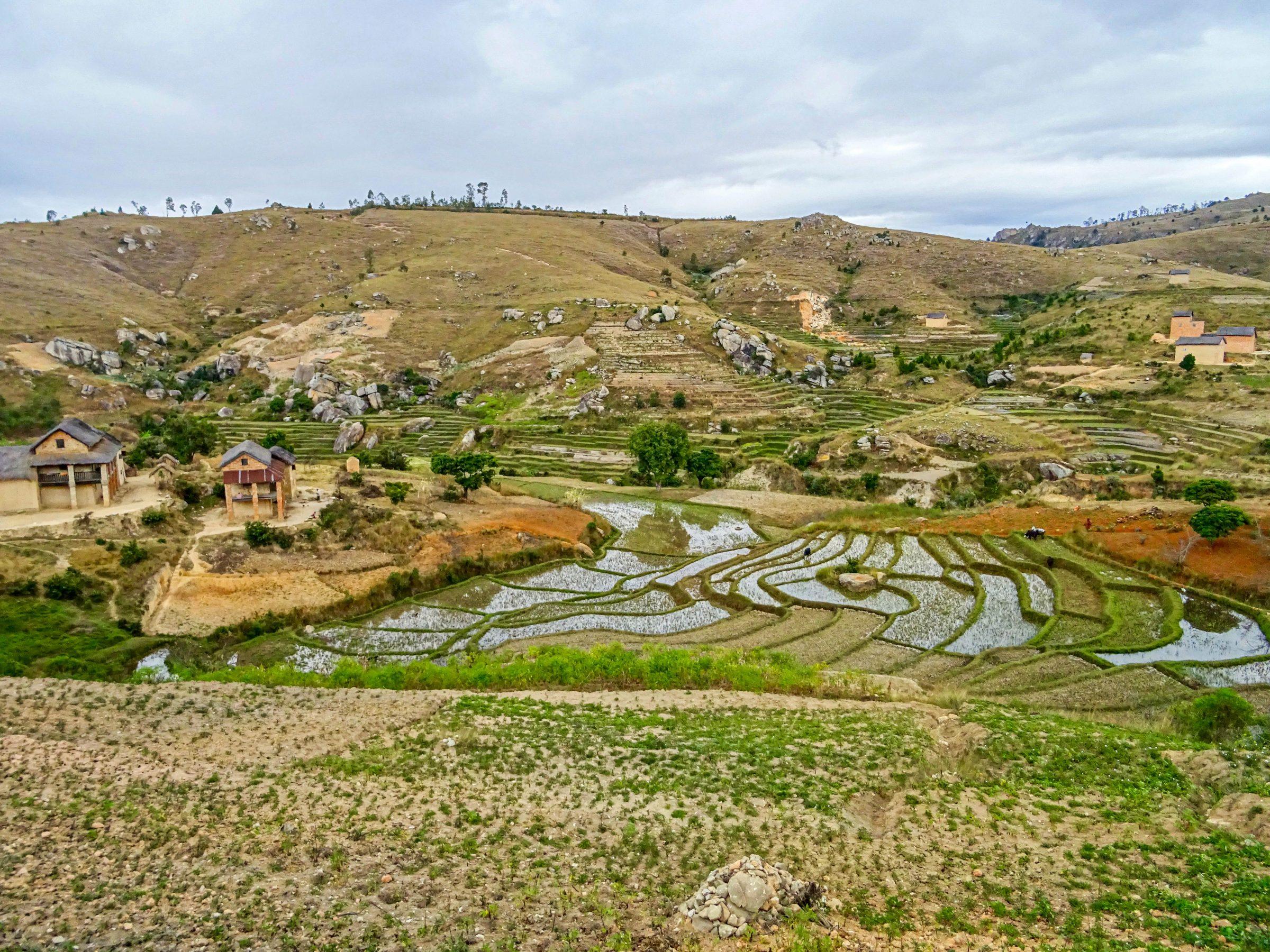 Srijstterrassen nabij Ambakoana