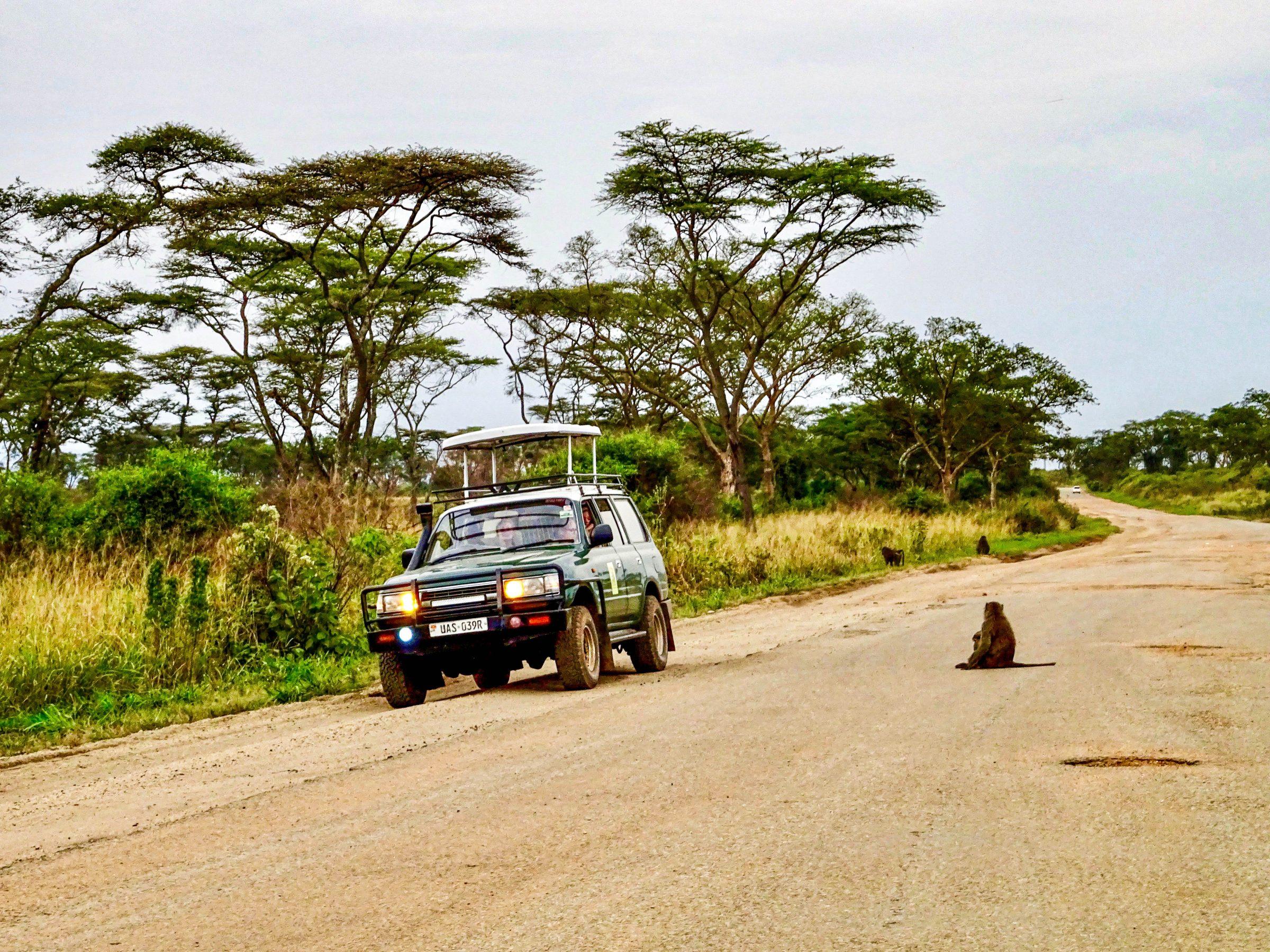 Een safariwagen in Queen Elizabeth NP