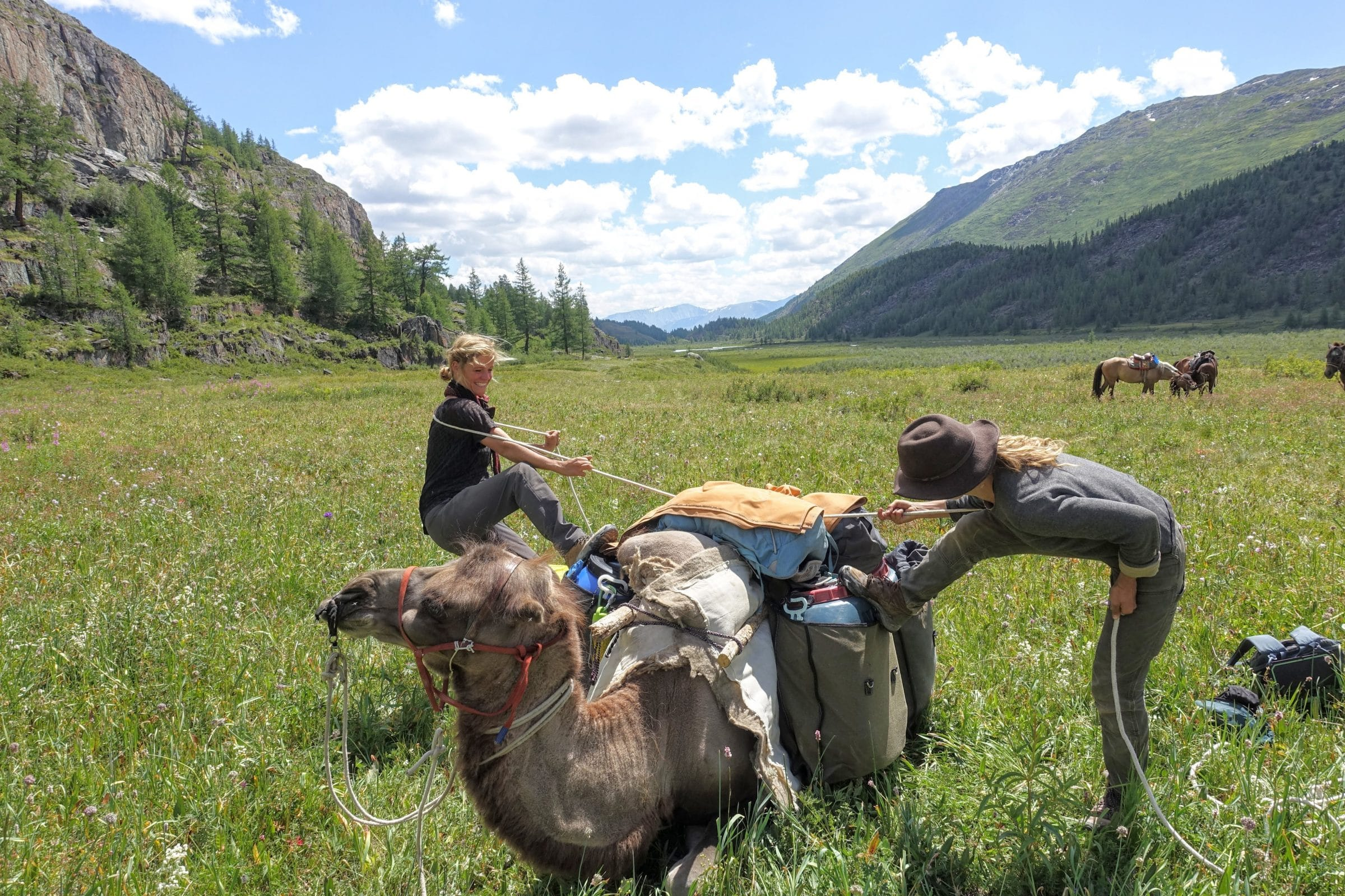 Samen een kameel bepakken