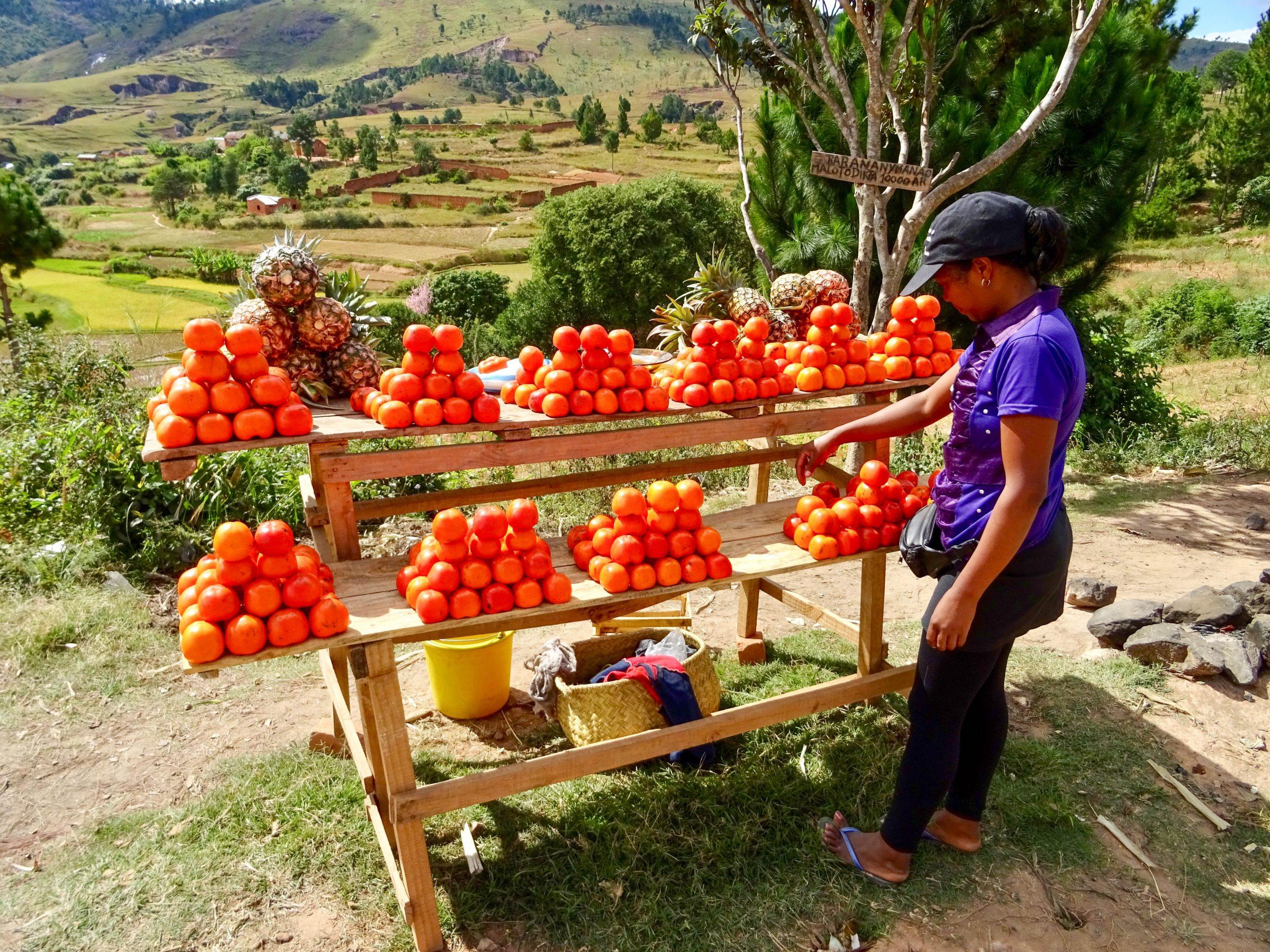 Heerlijke sinaasappels te koop in Tisafahy