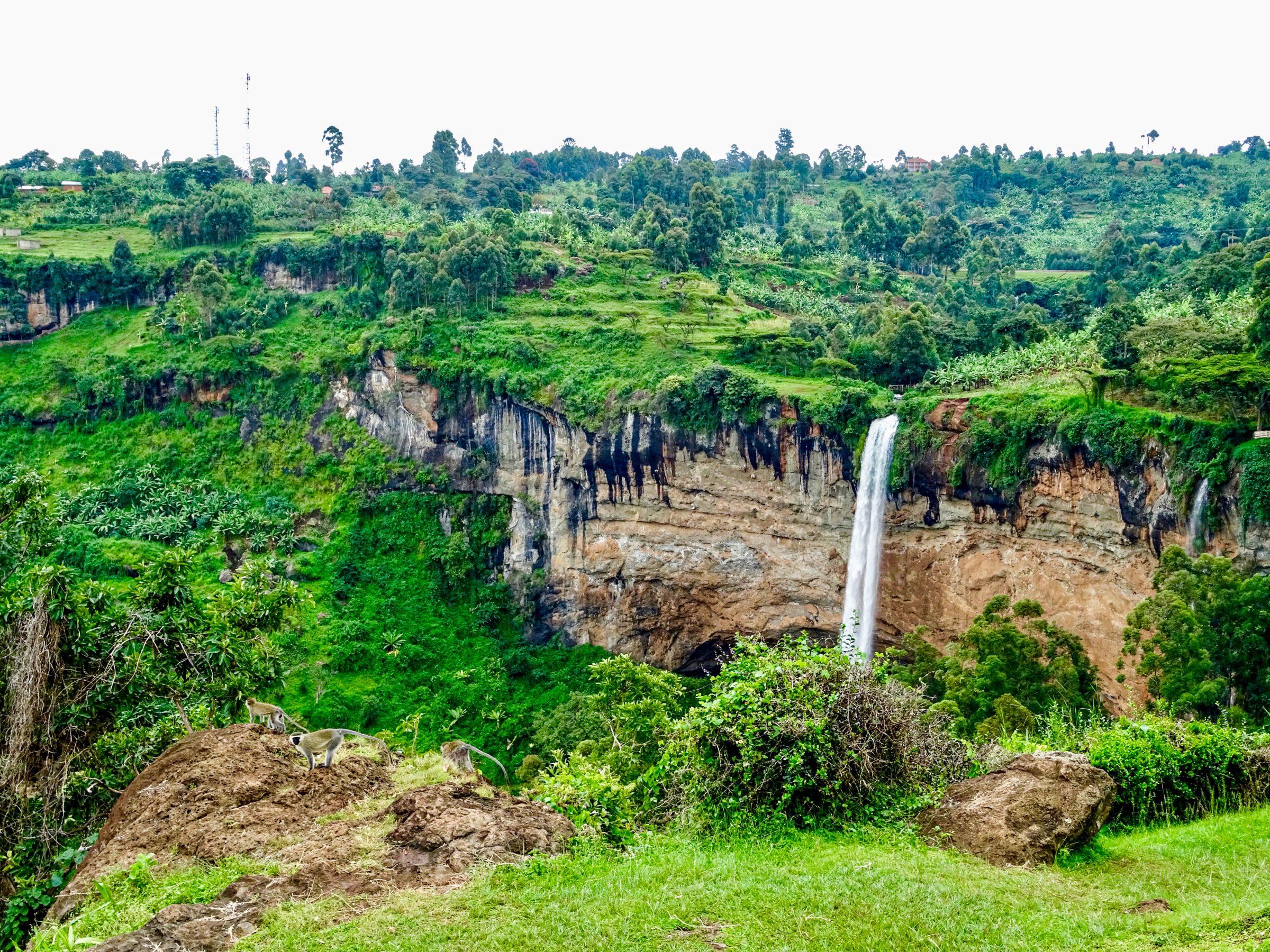 Sipi Falls vanaf het terras van Sipi Falls Resort (met blauwaapjes)