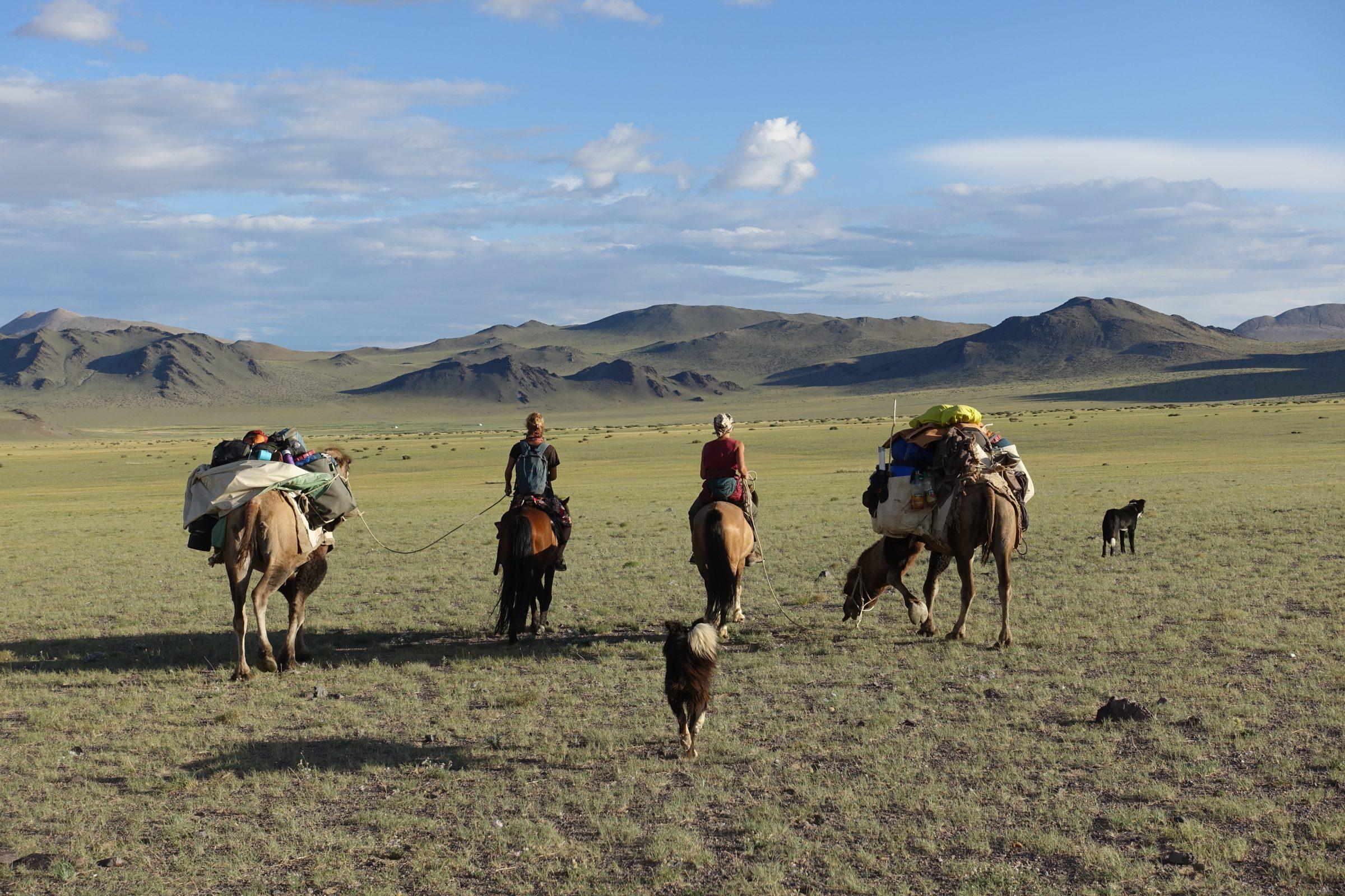 Twee meiden, twee kamelen, twee paarden en twee honden