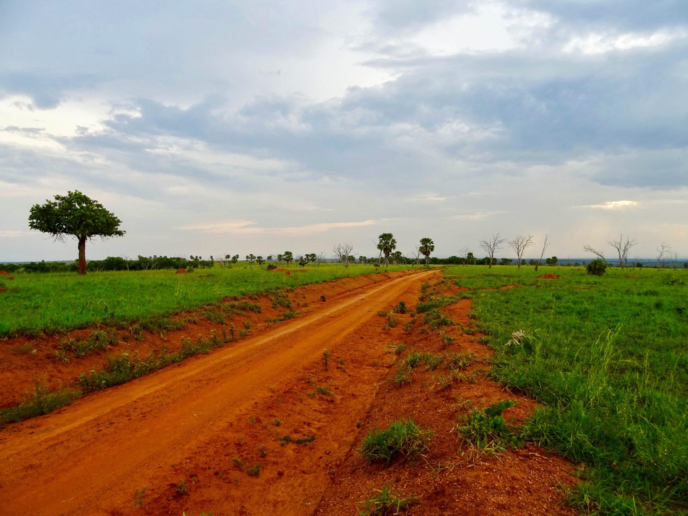 De rode zandweg richting Wankwar Gate, Murchison Falls NP