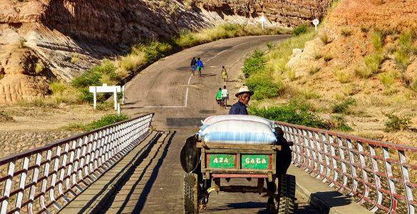 Zeboekar-op-de-brug-over-de-Manambolo-rivier-richting-Miandrivazo