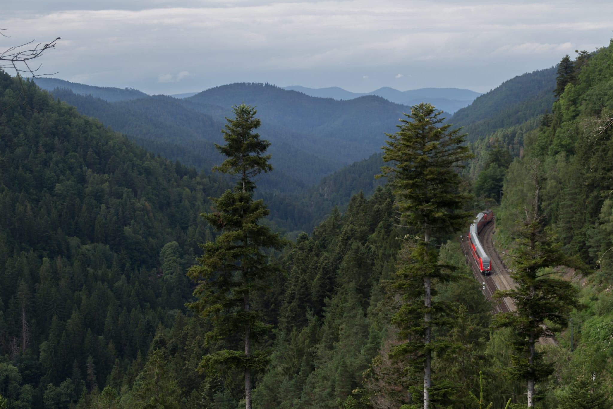 Zug-im-Schwarzwald-treinreis-duitsland
