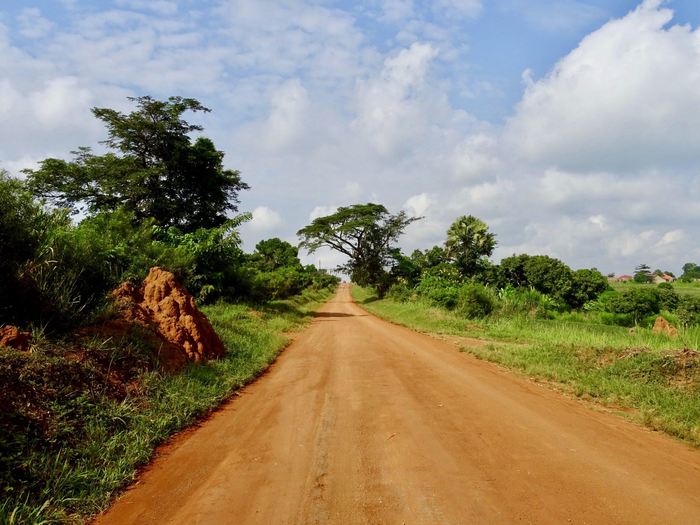 Termietenheuvels op weg naar Murchison Falls National Park