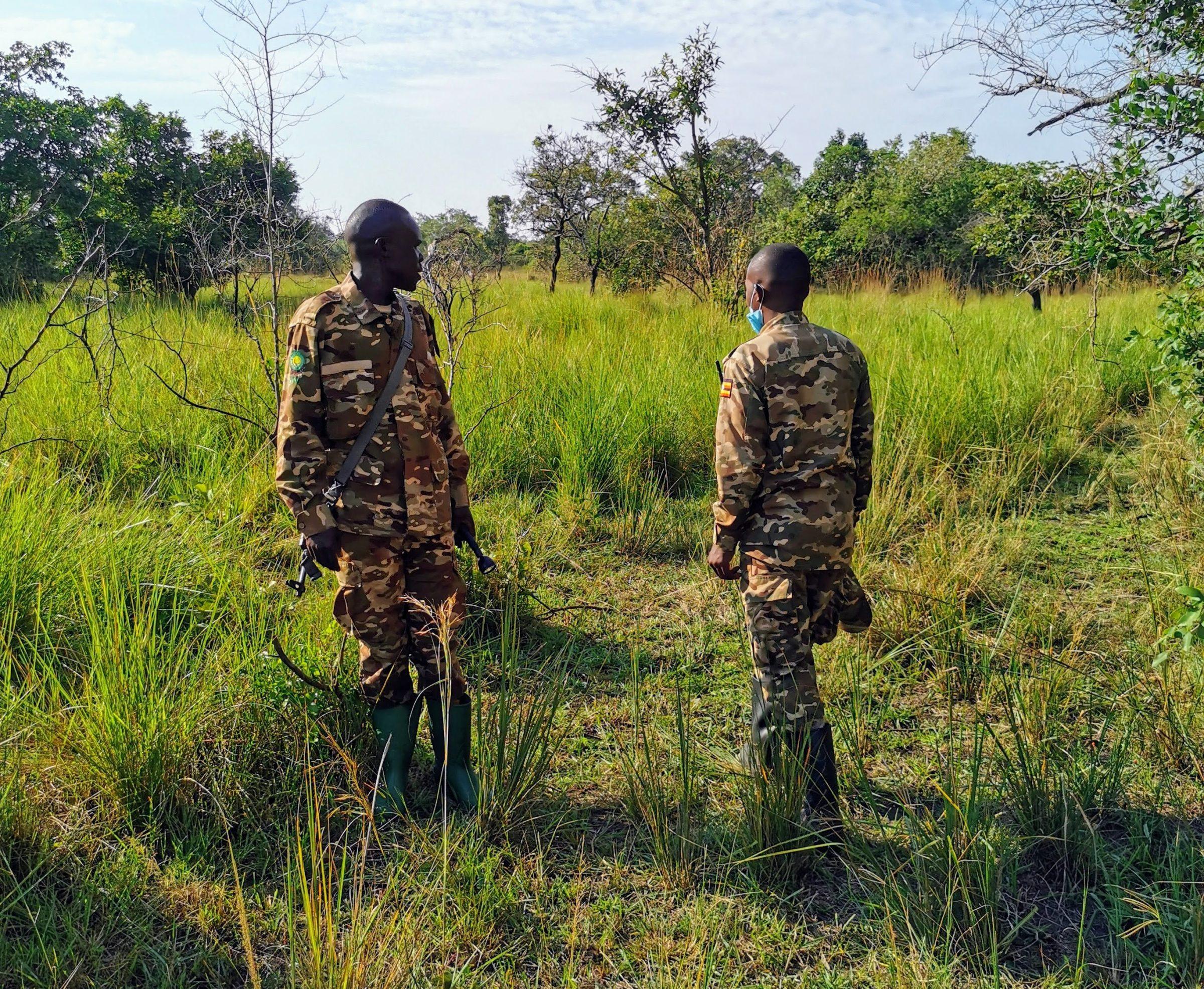 Gewapende rangers die de neushoorns 24/7 bewaken