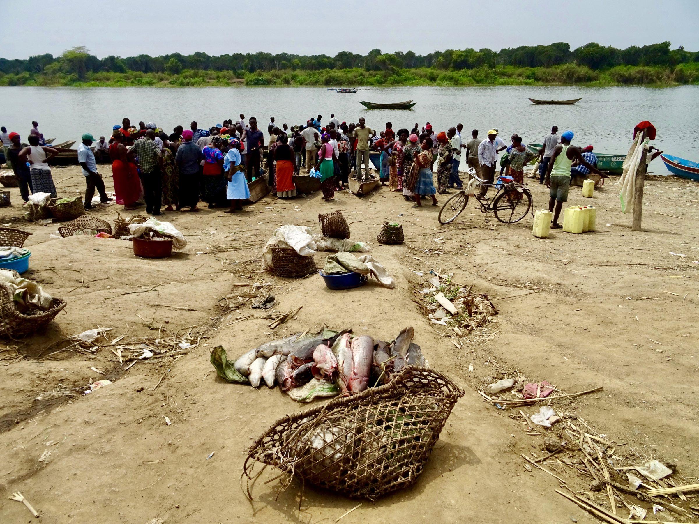 Manden met vis op de markt in Hamukungu, Lake George