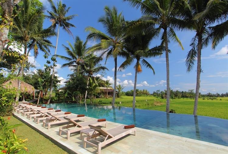 Te koop: Hotel & Yoga Resort - Ubud