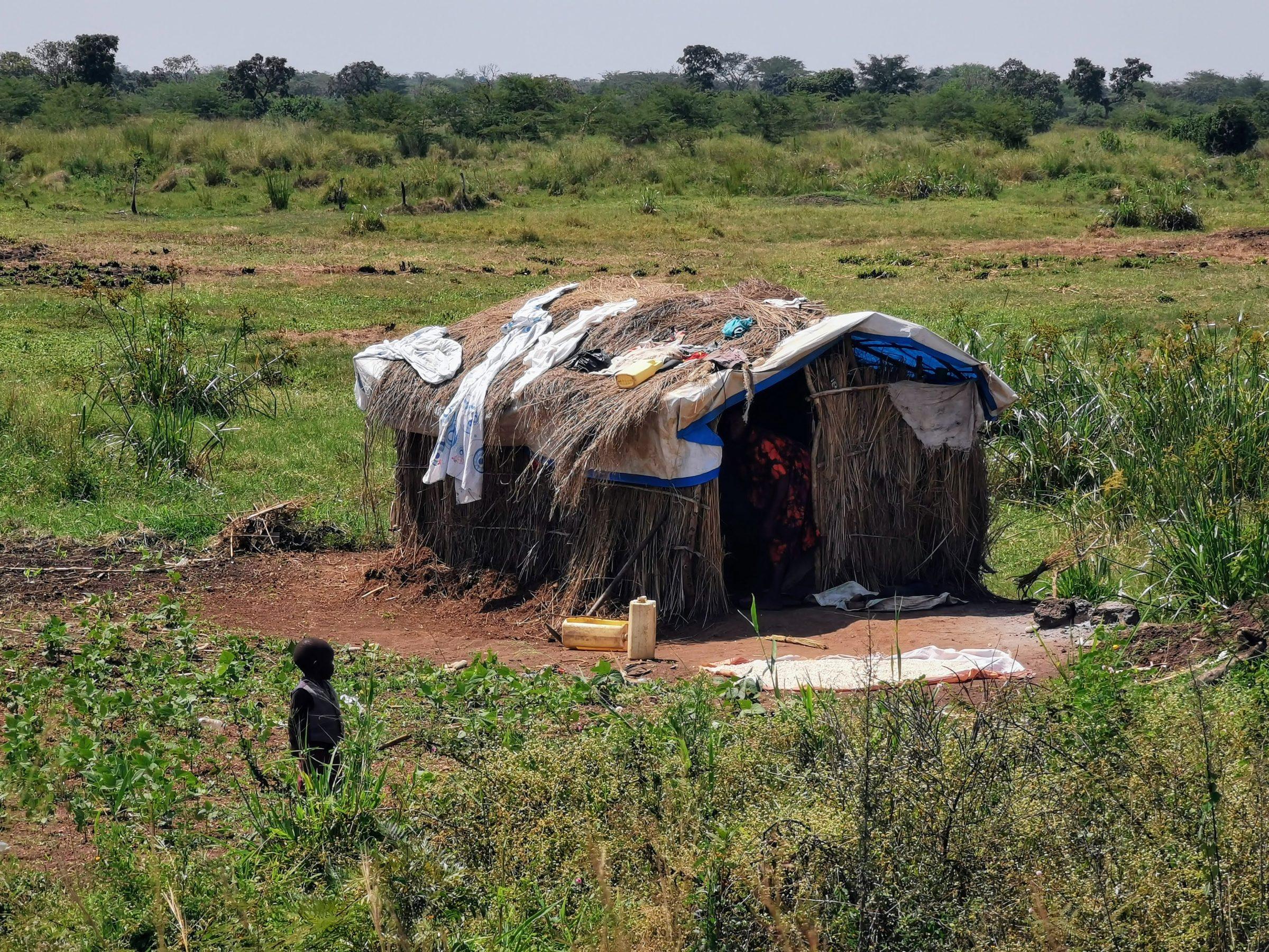 Een hutje van een Zuid-Sudanees vluchtelingen gezin