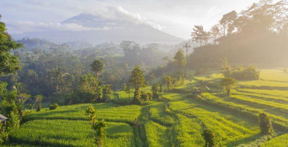 indonesia travel news