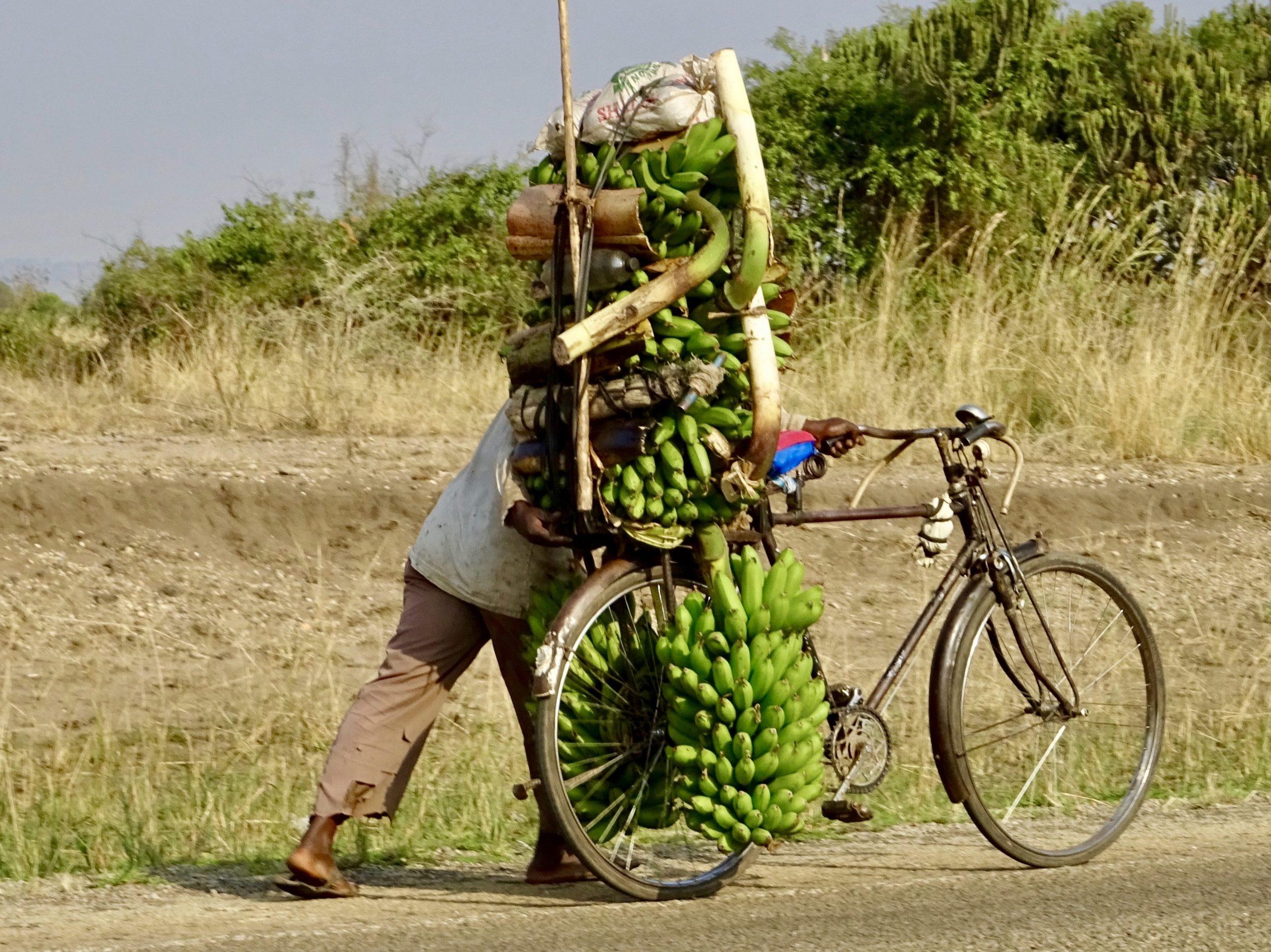 De bananenman op weg naar Kasese