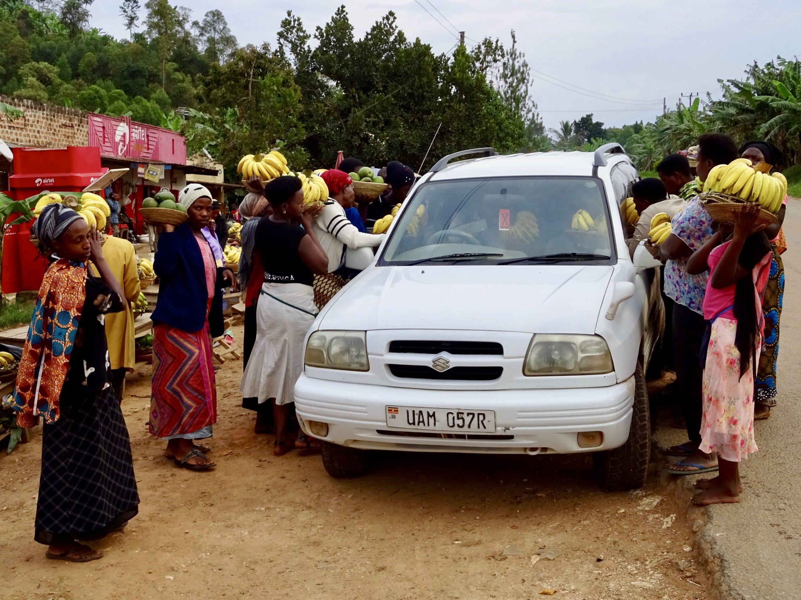 De bananenbluesbrigade in actie in Kichwamba