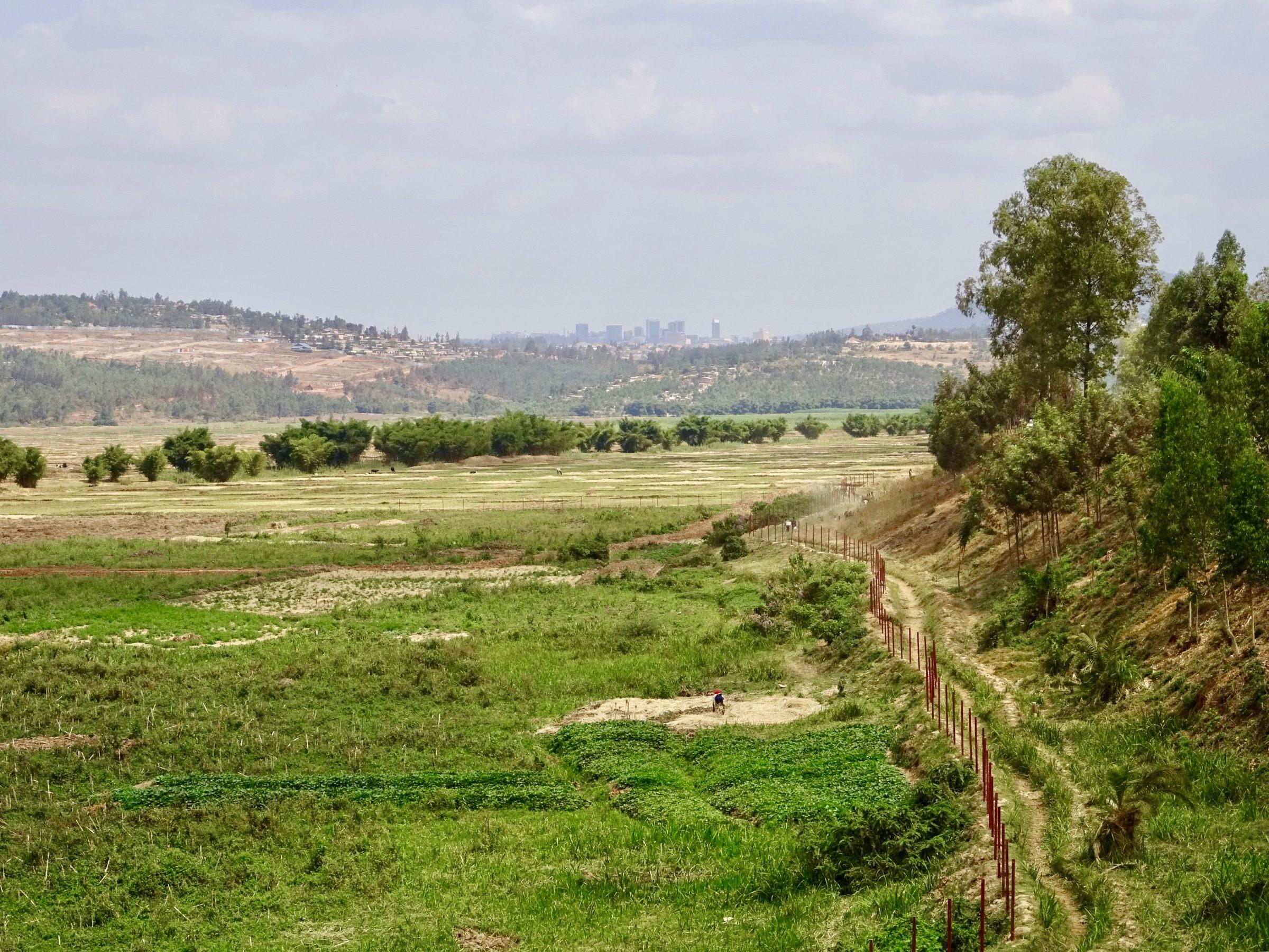 Aan de horizon de skyline van Kigali