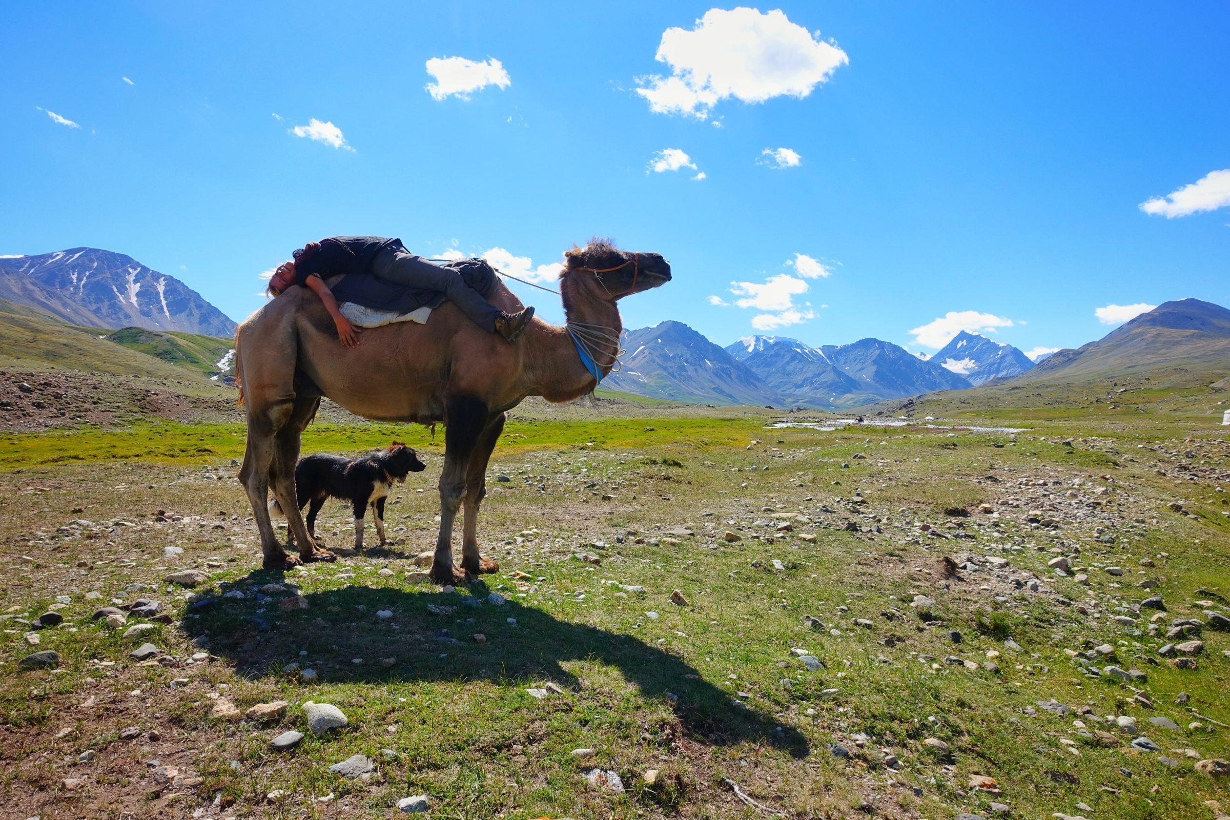 Even relaxen op de rug van kameel Simbat