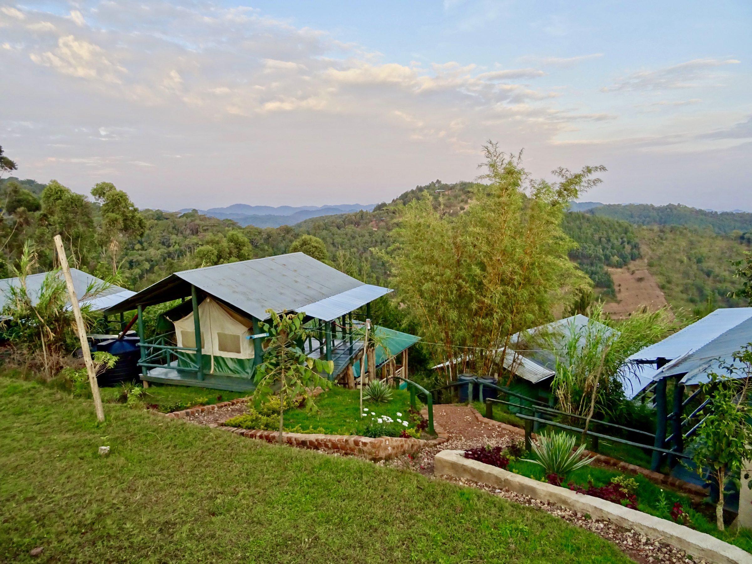 Mijn luxe tent in Ruhija Gorilla Restcamp