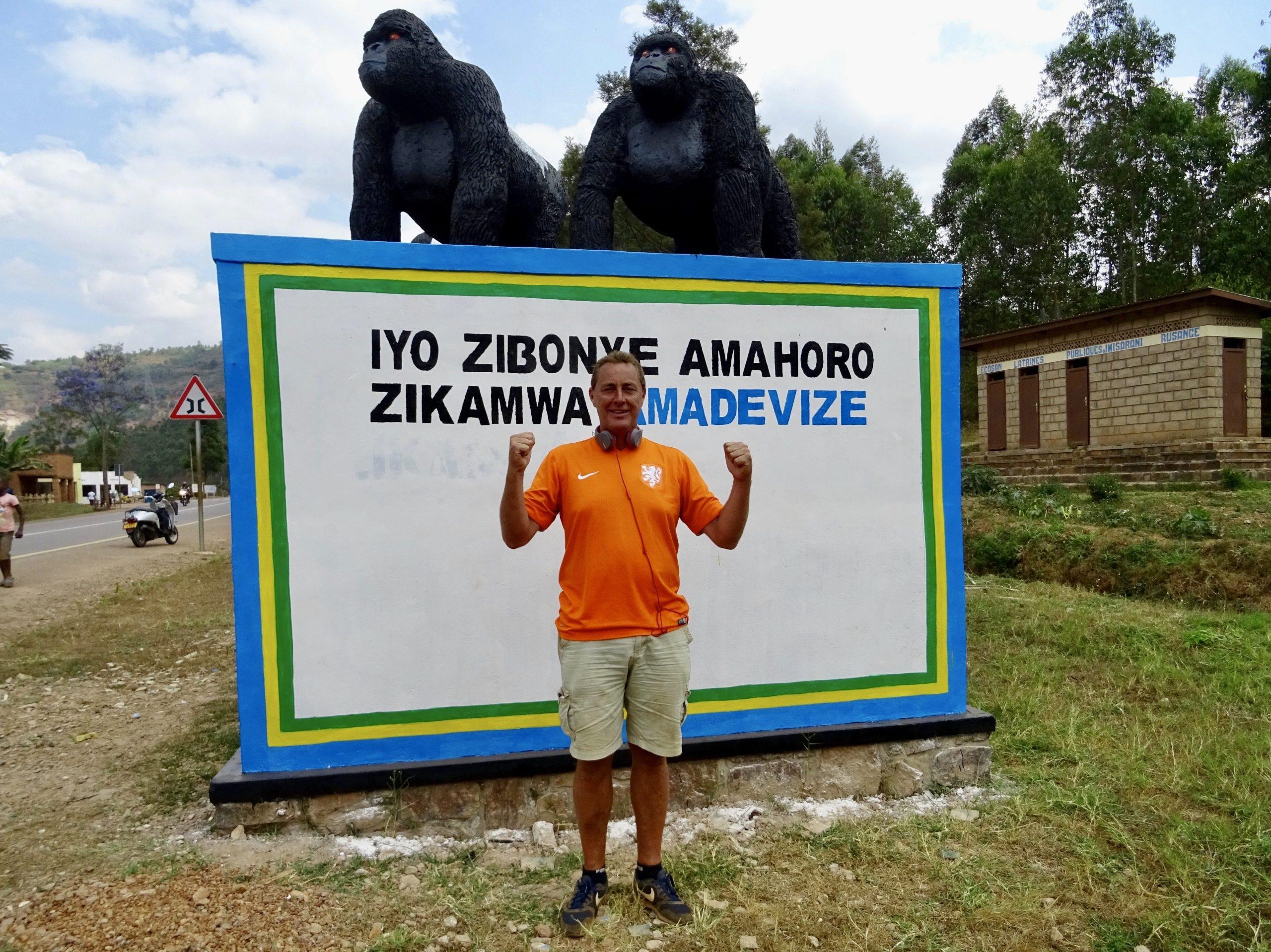 Bij de gorilla's langs de weg in Rwanda